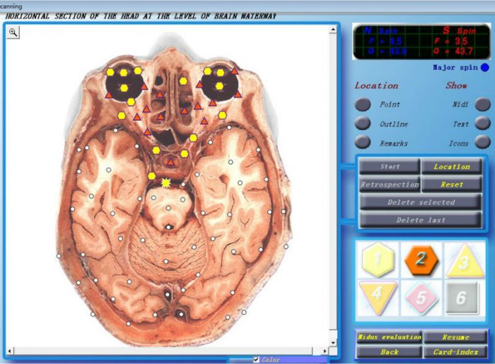 3d cell nls software
